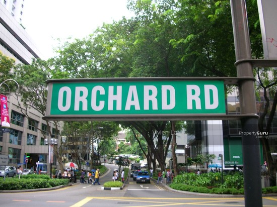 Street Level Fitted Restaurant For TakeoverOrchard Orchard Road Singapore Food Beverage Rent
