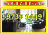Parc Elegance - Property For Sale in Singapore