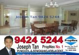 193 Edgefield Plains - Property For Sale in Singapore