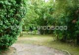 Leedon Road Good Class Bungalow - Property For Sale in Singapore