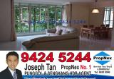 109C Edgedale Plains - Property For Sale in Singapore