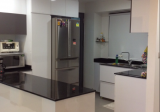 Pinnacle @ Duxton - Property For Rent in Singapore