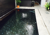 Braddell Road house w Pool - Property For Sale in Singapore
