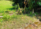 Rare GCB Land to rebuild your dreamed Home - Property For Sale in Singapore
