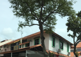 Joo Chiat, Katong, East Coast - Property For Sale in Singapore
