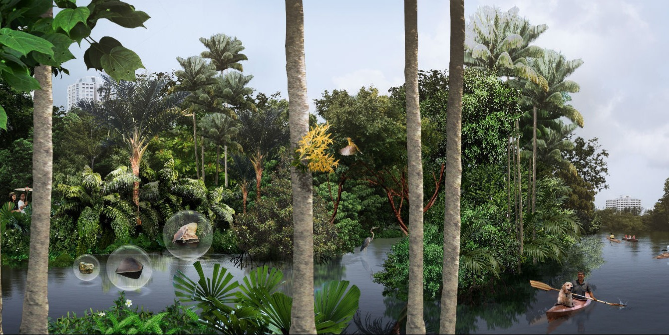 New plans revealed for Jurong Lake Gardens