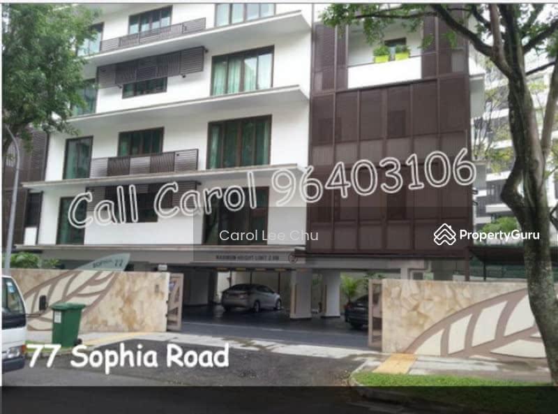 Starfire Sophia 36121548