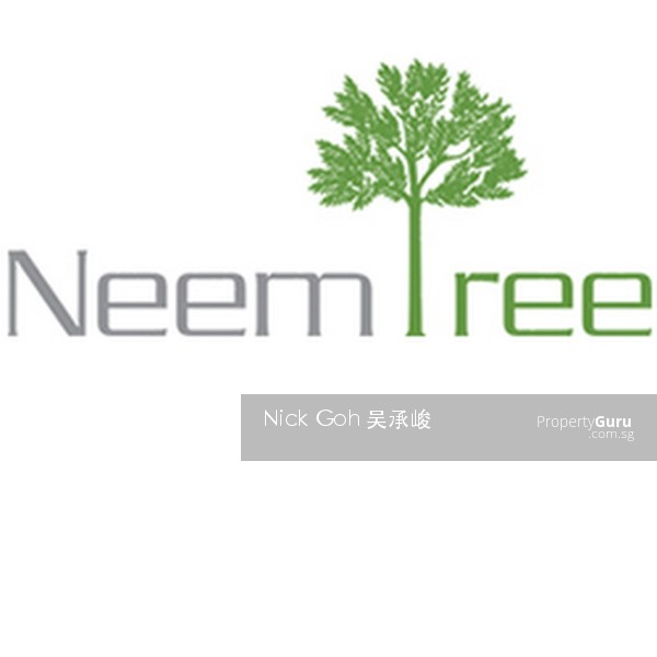 Neem Tree For Sale