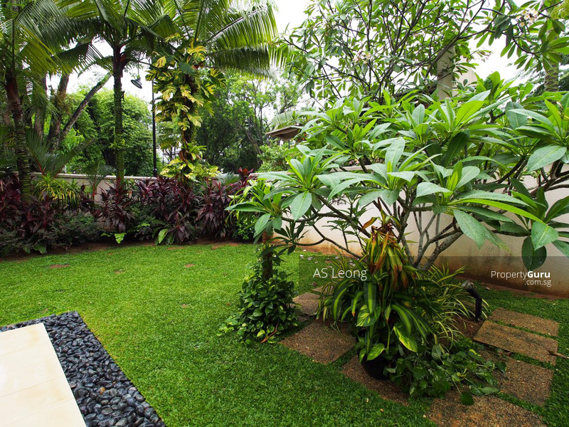 7 Rooms Bright Home w Pool Garden near Australian French American School #71739602