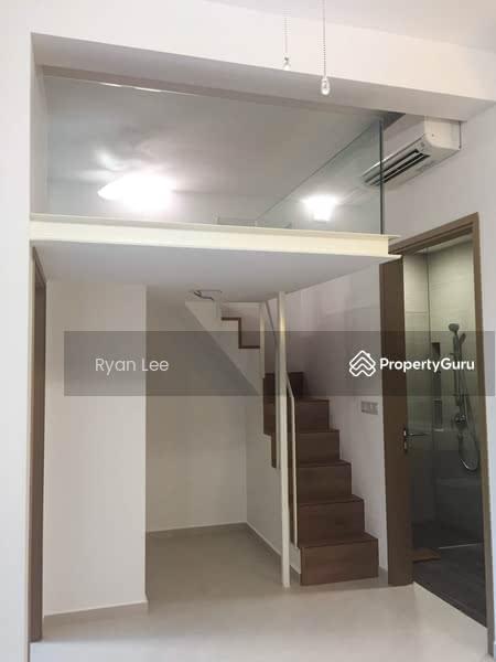 Study Area with Platform Loft