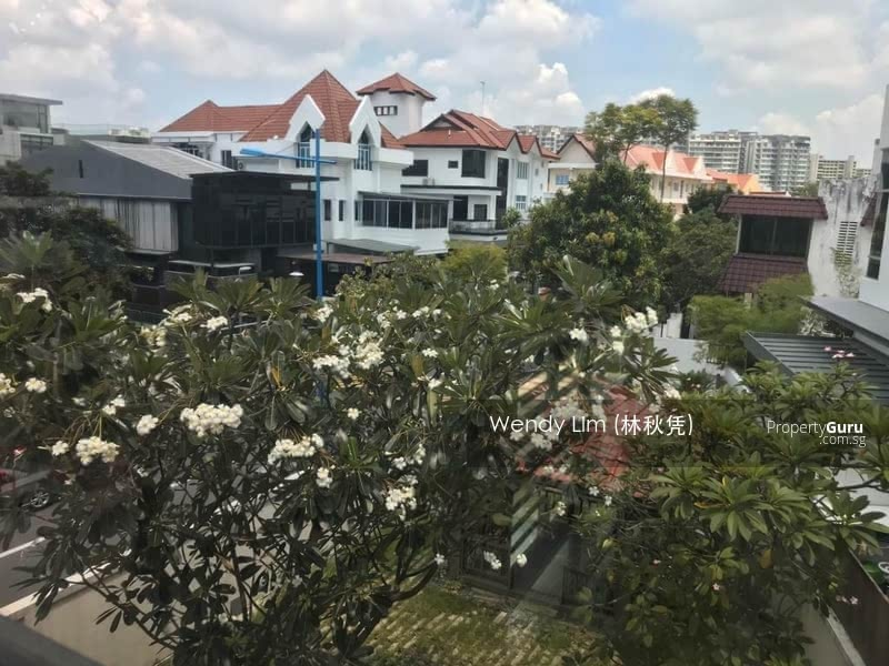 Jalan Senang Corner Terrace Big Garden #126528622