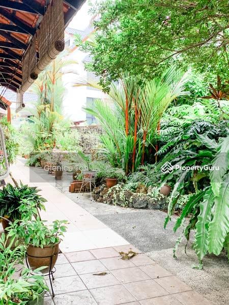 Picardy Garden #113892962