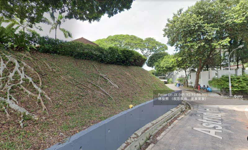WOW! Millions $ View! Dual Frontage! Elevated! 1km Henry Park Primary(顶级优质洋房) (9295-8888 祝您祝我, 发发发发) #129445676