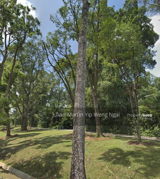 ⭐️$48.x mil Cluny Nassim Dalvey Botanic 植物园⭐️ #124494762