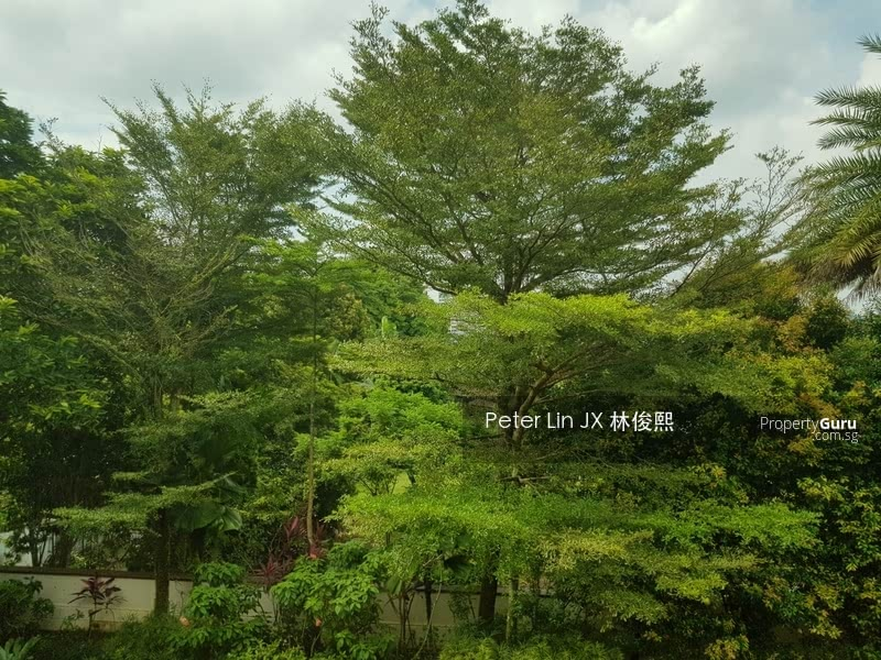 For Sale - 4 Mins Walk to Botanic Garden! Elevated & Natural Basement! Private! (顶级优质洋房) (9295-8888 祝您祝我, 发发发发)