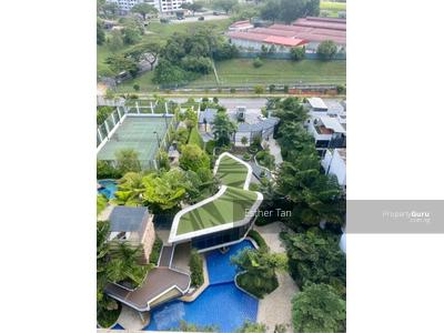 For Sale - The Rainforest