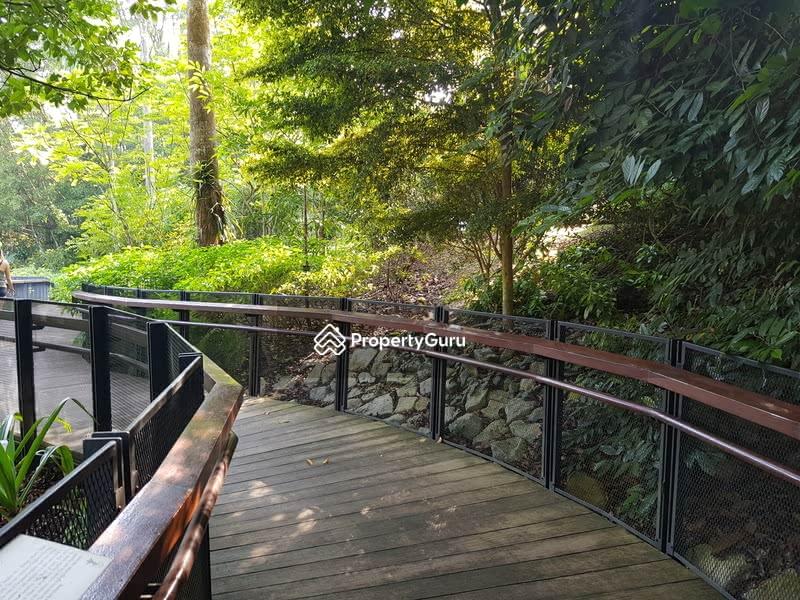 Cluny/Botanic/Gallop! 独 立 优 质 洋 房 出 售. Elevation And Location 。 James 83839800。Botanic MRT #130078244