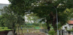 Mountbatten Goodman Old House to Build Brand New Detached Bungalow Call 81394988 Now!