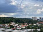 Braddell View