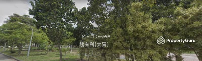 Frankel Detached Bungalow land! Dump $1m to Revive Dump $2m to be on Magazines Call David 大胃 Now! #126866058