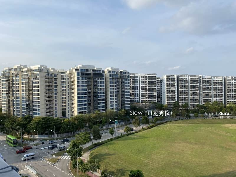 519A Tampines Central 8 #127504042