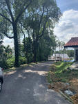 belmont road