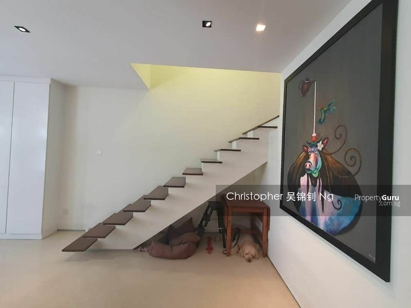 D09 Terrace For Sale, Orchard MRT, Freehold #128648156