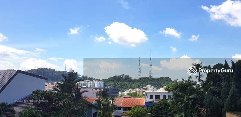 Hillview D23 Jalan Dermawan ★ Star Buy $5.28m Brand New Freehold Designer Villas ★ TOP Soon #128916120
