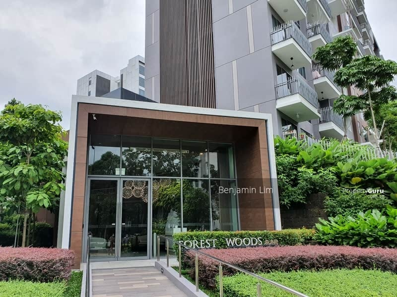 Forest Woods #129098214