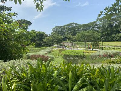 For Sale - Bukit Timah Almost 18m frontage Square Land