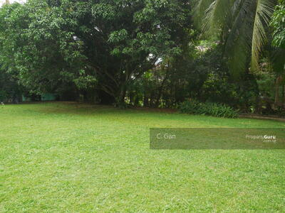 For Sale - Elevated Queen Astrid Area