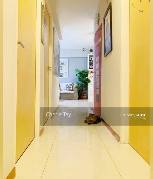 519C Tampines Central 8 #129935470