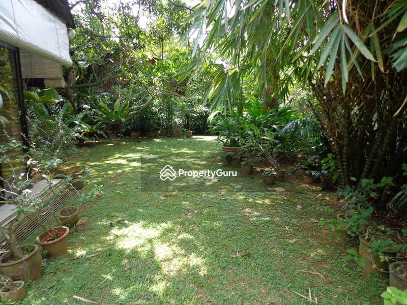 Elevated Regular Raffles Park #129527706