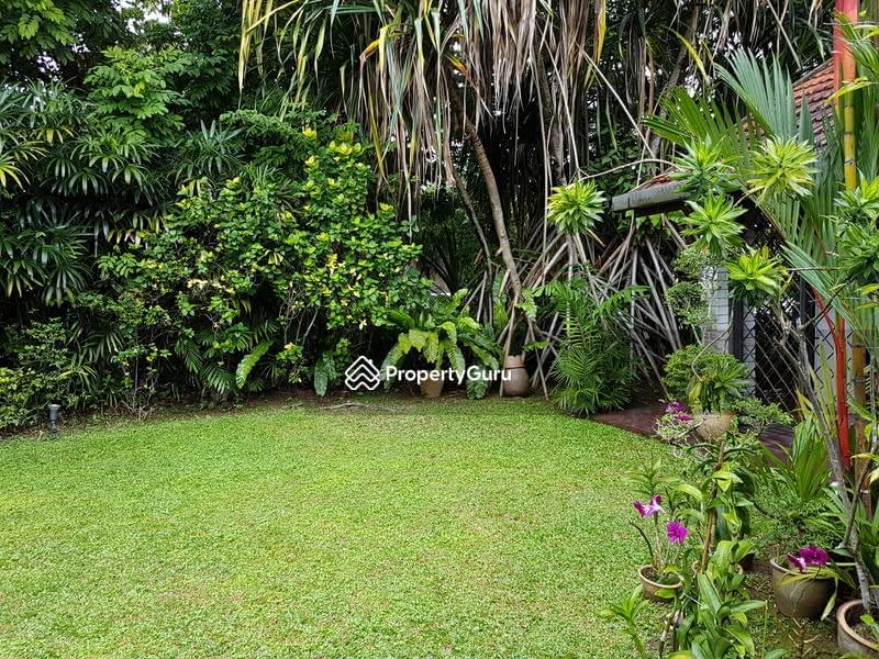 Elevated Regular Raffles Park #129527724