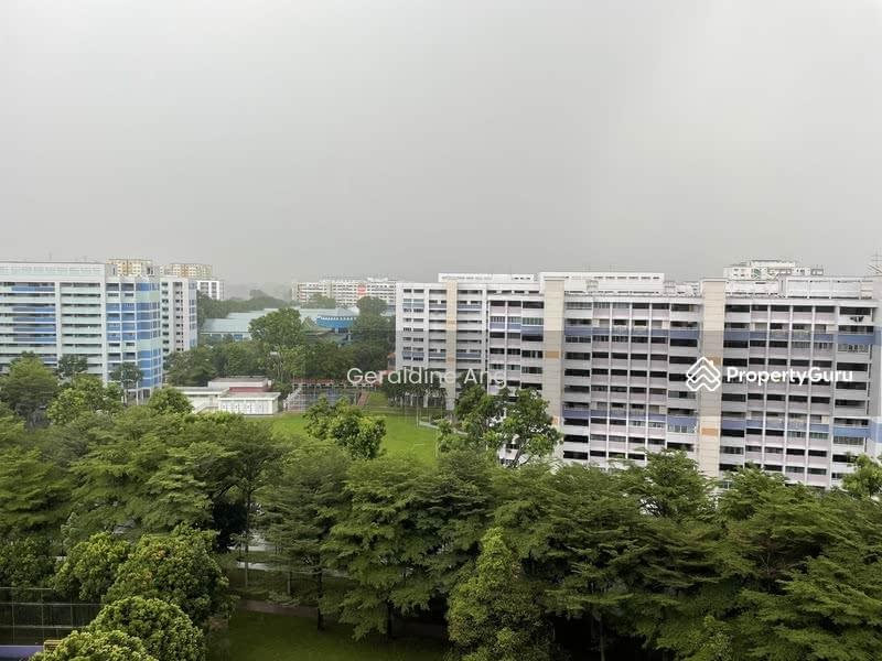 471 Jurong West Street 41 #129532682