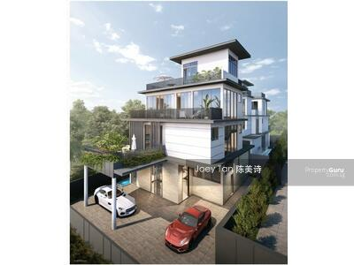 For Sale - Kovan area brand new luxury detached home