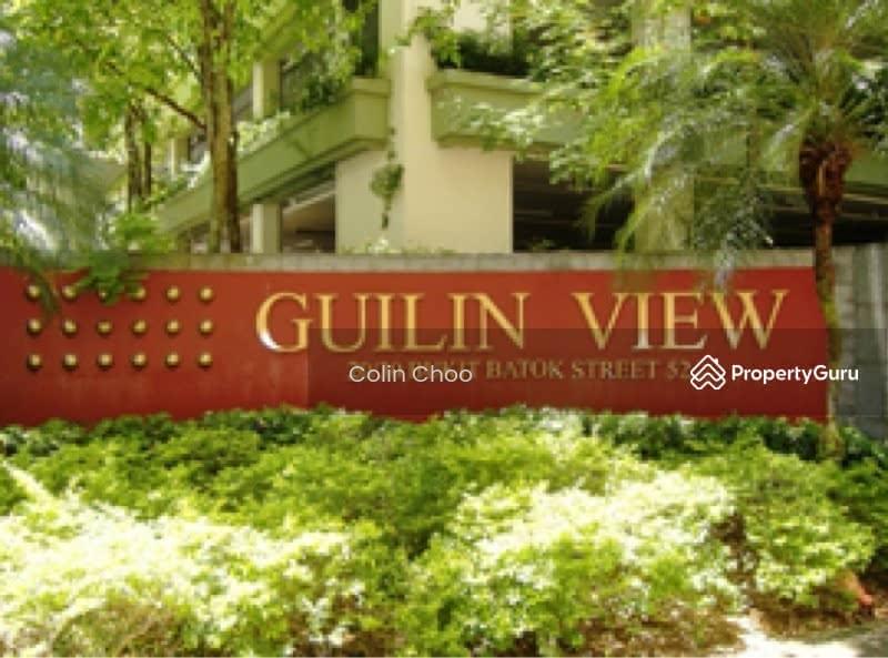 Guilin View Condominium #130036052