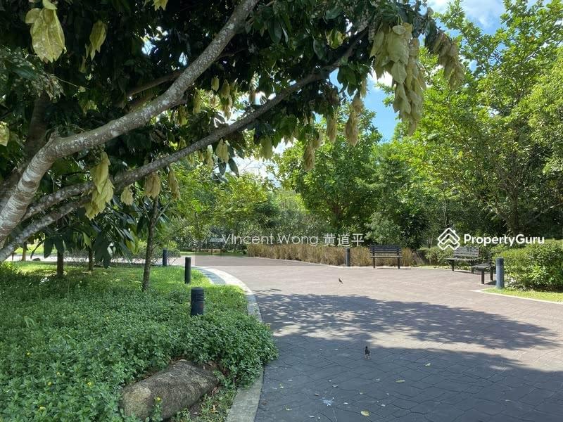 Charming Corner Terrace Near Park #130032770