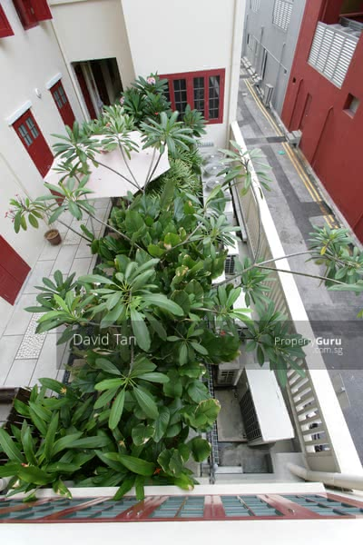 2 Bedroom plus Study in an Award Winning  Conserved Shophouse Apartment in Chinatown #130097442