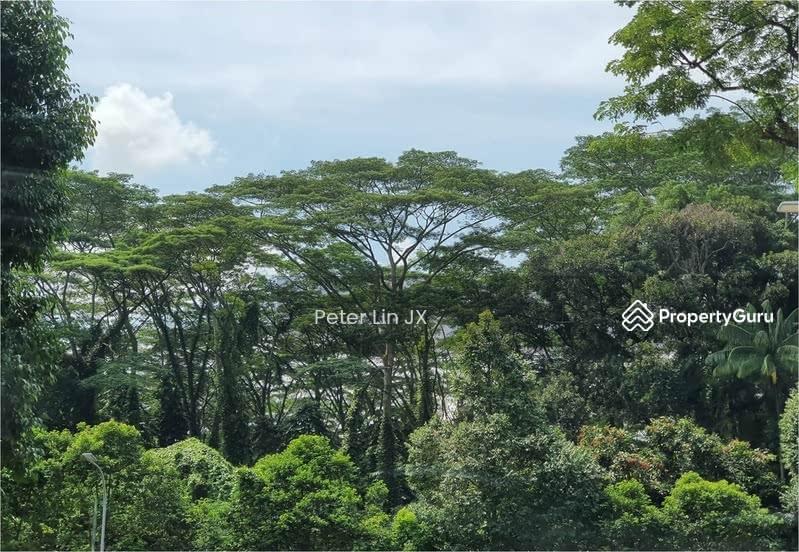 5 Min Botanic Garden Nassim Gate! Elevated! Squarish! Wide Frontage! (顶级优质洋房) (9295-8888 祝您祝我, 发发发发) #130113694