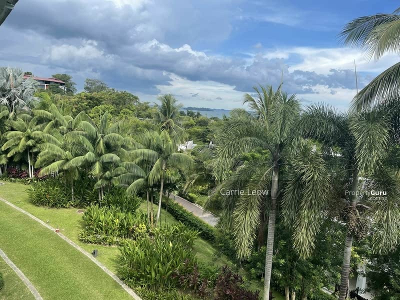 Wow Semi D at old upper thomson road for rent #130471486