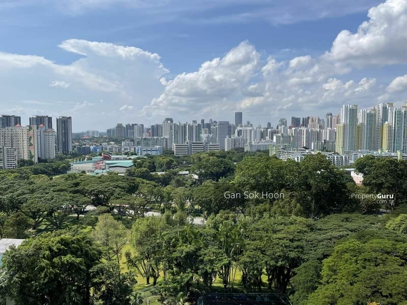 Breathtaking greenery view of Orchard