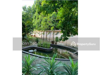 For Sale - Popular Seletar Estate Corner Semi Detached for garden lovers. RARE Huge land. 5 +1+1+1. Park 4 Cars