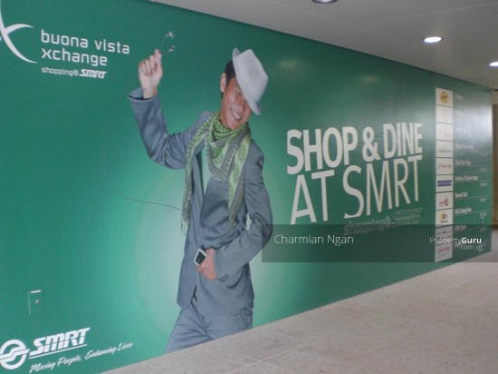 retail shop for rental @ buona vista mrt station  1122235