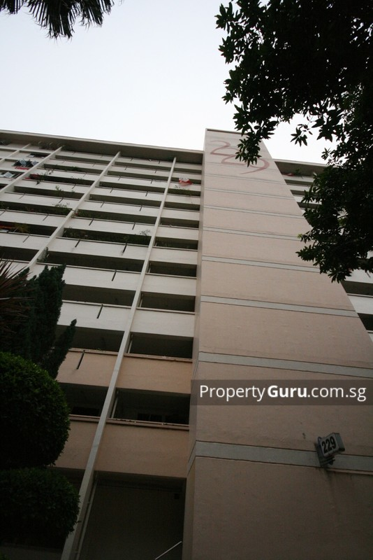 229 Jurong East Street 21 #0