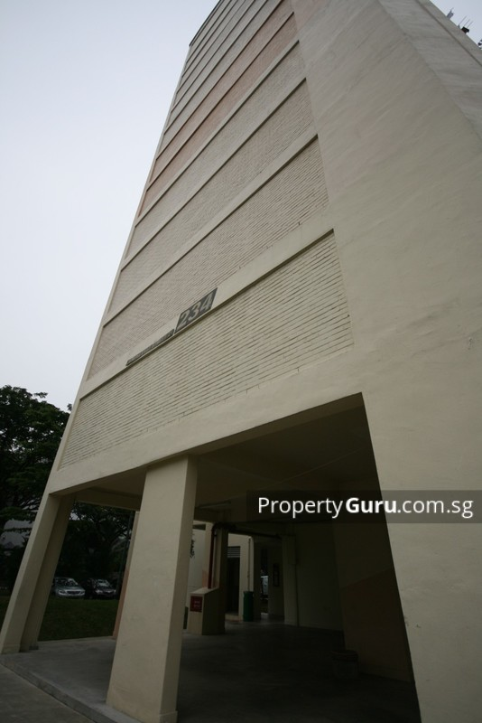 234 Jurong East Street 21 #0
