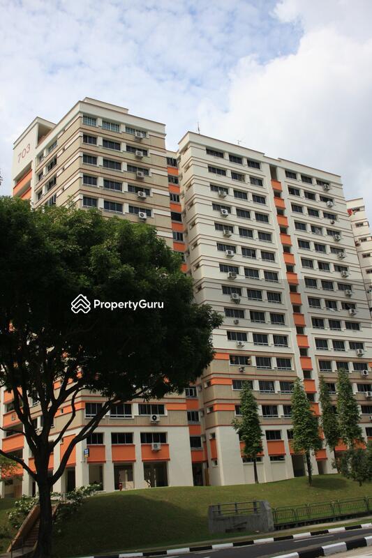 703 Jurong West Street 71 #0
