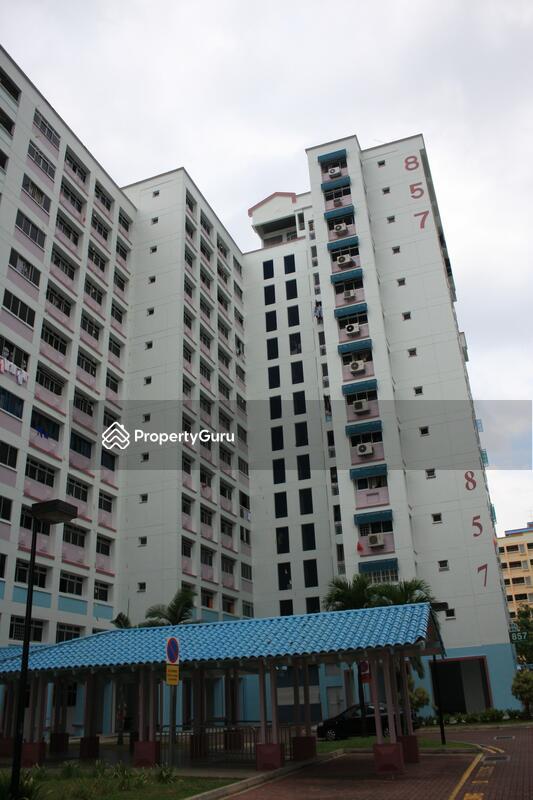 857 Jurong West Street 81 #0