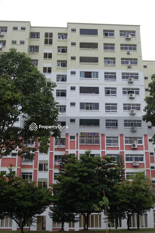 205 Pasir Ris Street 21 #0