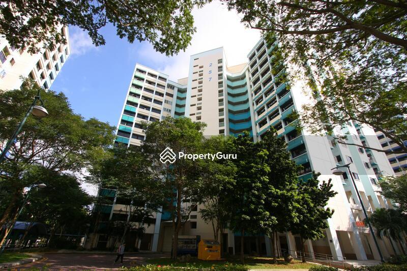 257 Serangoon Central Drive #0